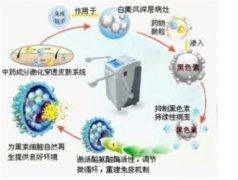 全智能中药微粒子热雾疗法